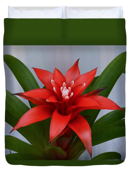 Bromeliad Duvet Cover by Terence Davis