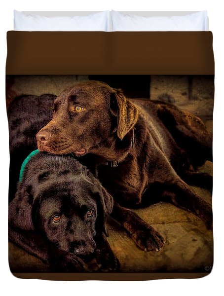 Brotherhood Duvet Cover by Wallaroo Images