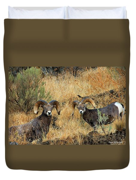 Brothers Duvet Cover by Steve Warnstaff