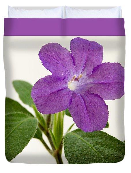 Browallia Speciosa Duvet Cover