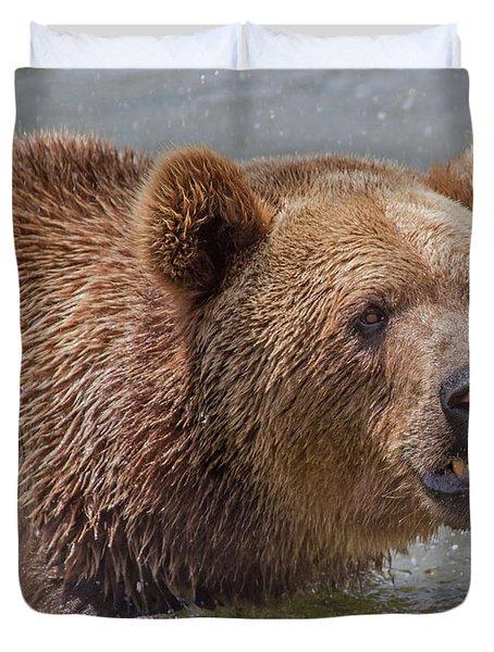 Brown Bear 10 Duvet Cover