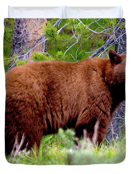 Brown Bear Duvet Cover