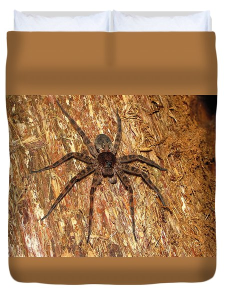 Brown Fishing Spider Duvet Cover by Joshua Bales