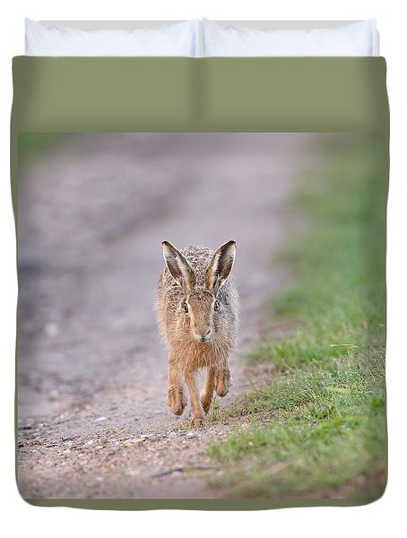 Brown Hare Approaching Down Track Duvet Cover