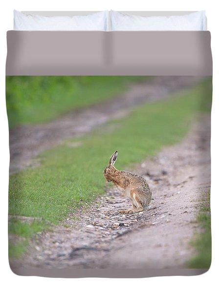 Brown Hare Cleaning Duvet Cover
