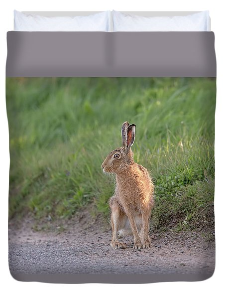 Brown Hare Listening Duvet Cover