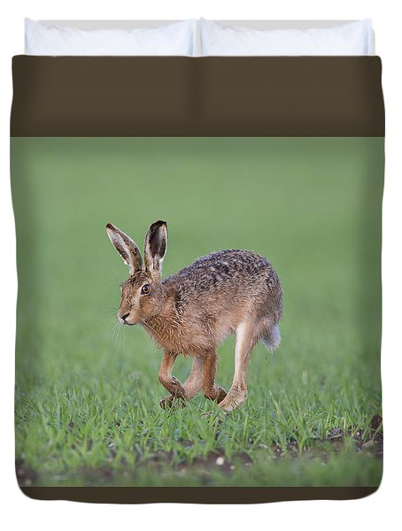 Brown Hare Running Duvet Cover