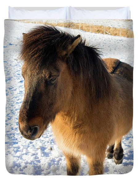 Duvet Cover featuring the photograph Brown Icelandic Horse In Winter In Iceland by Matthias Hauser