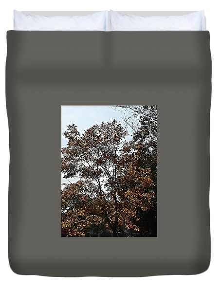 Brown Duvet Cover
