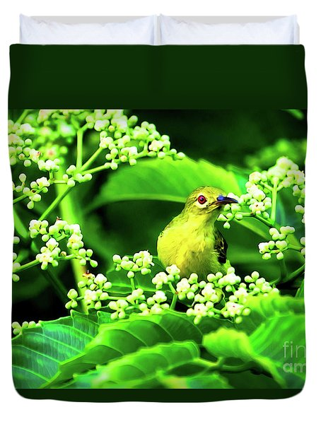Duvet Cover featuring the photograph Brown Neck Sunbird by Ray Shiu