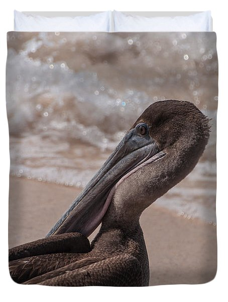 Brown Pelican On Las Bachas Beach Santa Cruz Indefatigable Island  Galapagos Islands Duvet Cover