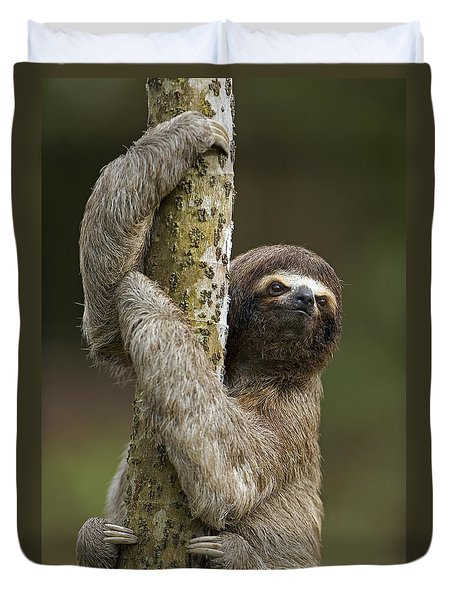 Brown-throated Three-toed Sloth Duvet Cover by Ingo Arndt