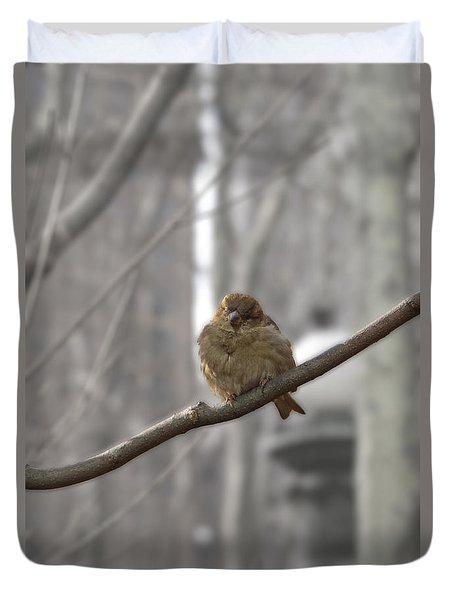 Bryant Park Bird Nyc Duvet Cover