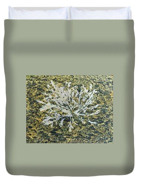 Bryozoan Life Duvet Cover
