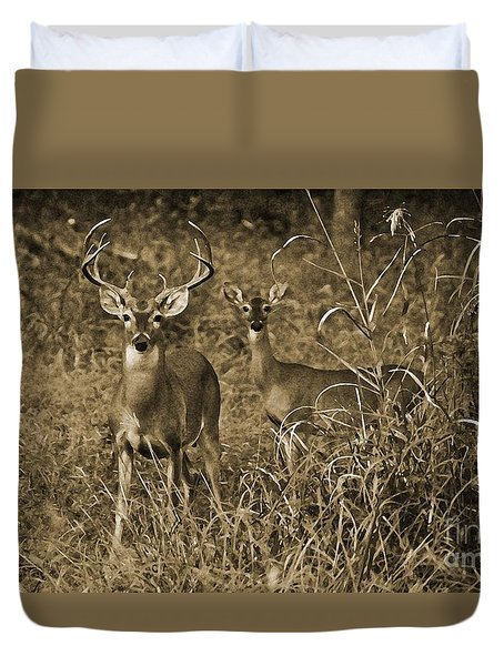 Buck And Doe In Sepia Duvet Cover