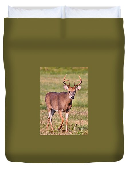 Duvet Cover featuring the photograph Buck by Debbie Stahre