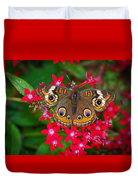 Buckeye On Pentas Duvet Cover