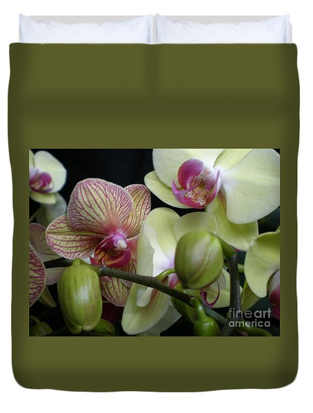 Budding Orchids  Duvet Cover