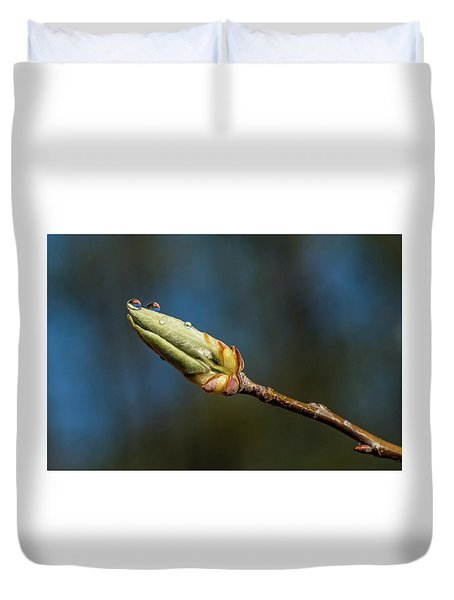 Duvet Cover featuring the photograph Buds With Water Drops by Paul Freidlund