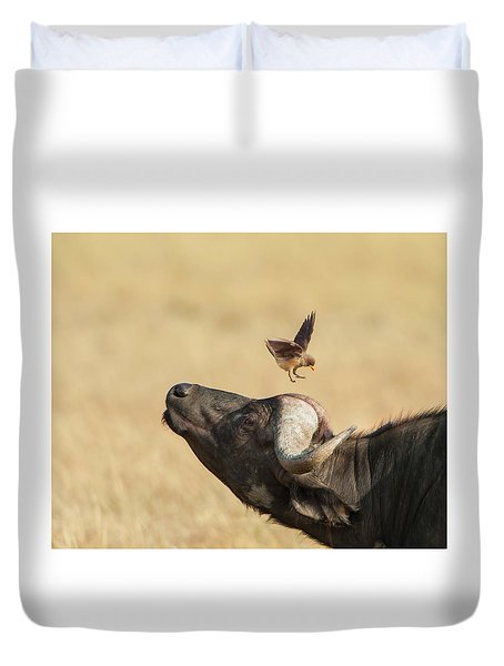 Buffalo And Oxpecker Bird Duvet Cover by Phyllis Peterson