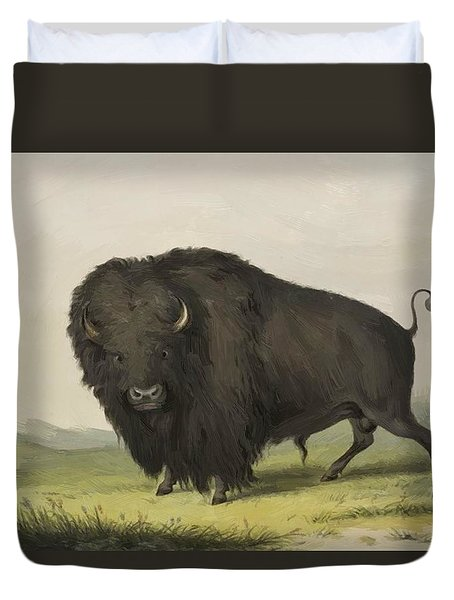 Buffalo Bull Grazing 1845 Duvet Cover