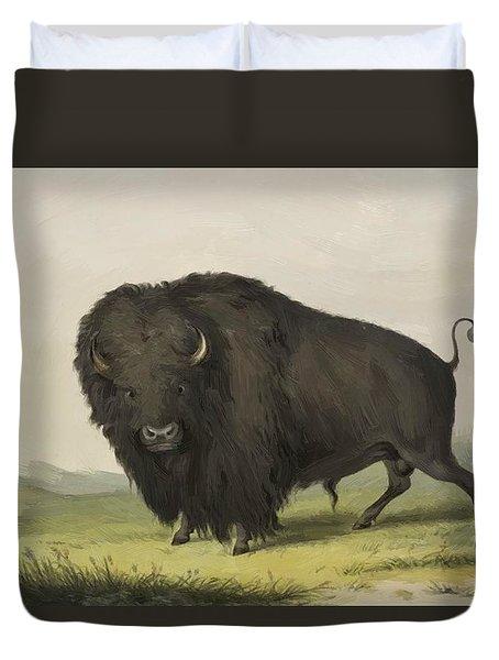 Buffalo Bull Grazing 1845 Duvet Cover