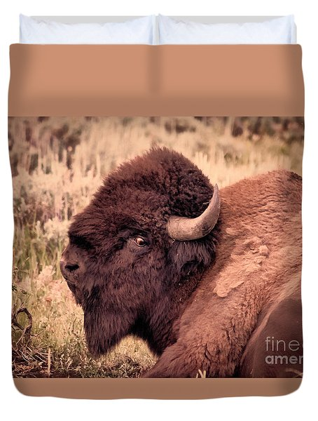 Duvet Cover featuring the photograph Buffalo Eye On You by Janice Rae Pariza