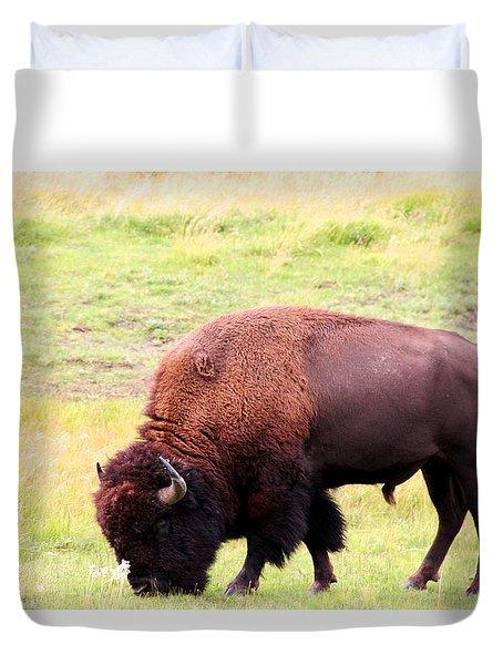 Buffalo Roaming Duvet Cover