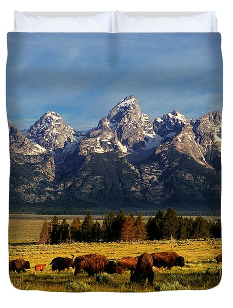 Buffalo Under Tetons Duvet Cover