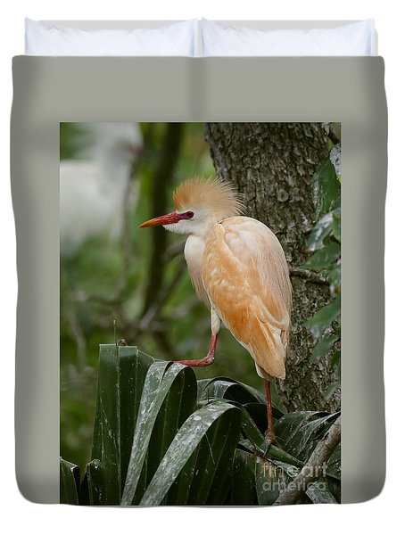 Buffy - The Cattle Egret Duvet Cover by Myrna Bradshaw