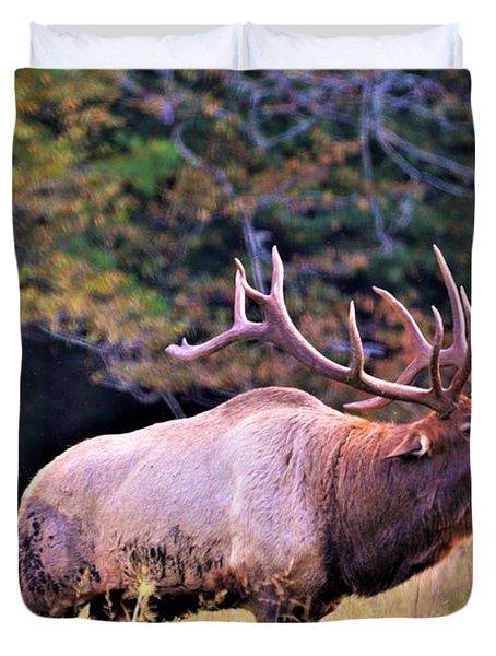 Bull Calling His Herd Duvet Cover