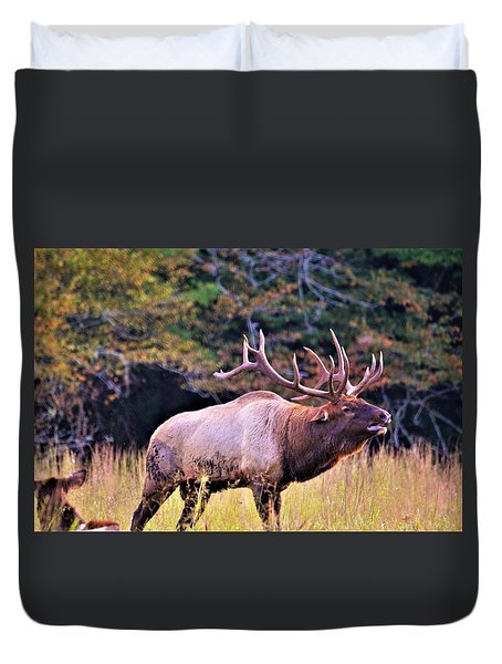 Bull Calling His Herd Duvet Cover