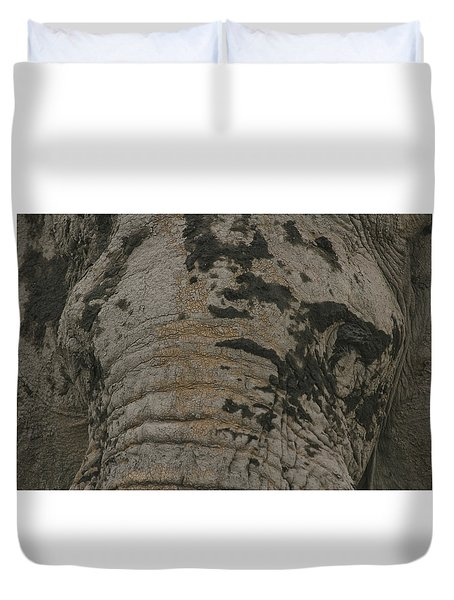 Duvet Cover featuring the photograph Bull Elephant Close-up by Gary Hall