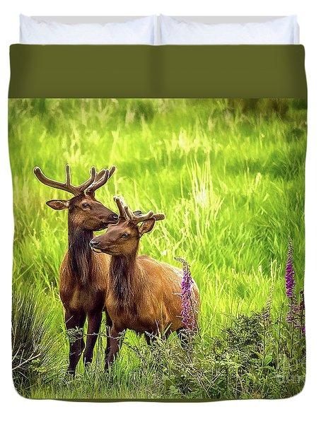 Bull Elk Duvet Cover by Billie-Jo Miller