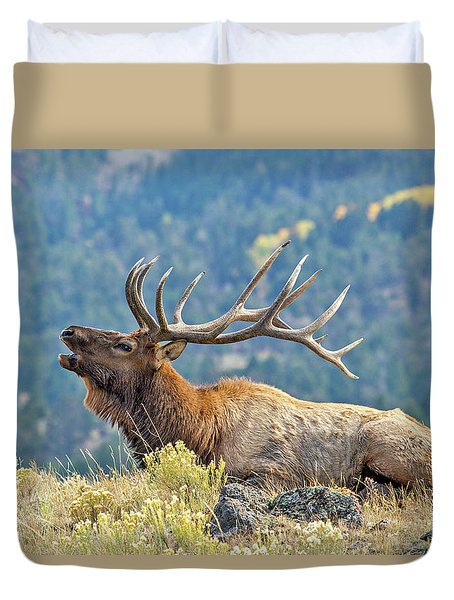 Duvet Cover featuring the photograph Bull Elk Bugling by Wesley Aston