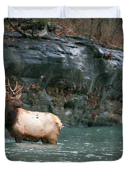 Duvet Cover featuring the photograph Bull Elk Crossing The Buffalo River by Michael Dougherty