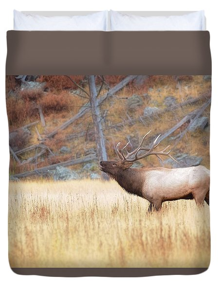 Duvet Cover featuring the photograph Bull Elk by Kelly Marquardt