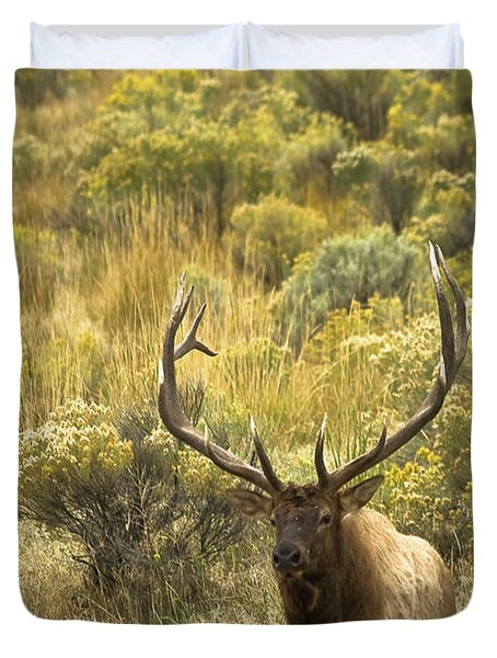Duvet Cover featuring the photograph Bull Elk by Roger Mullenhour