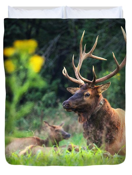 Duvet Cover featuring the photograph Bull Elk Rutting In Boxley Valley by Michael Dougherty