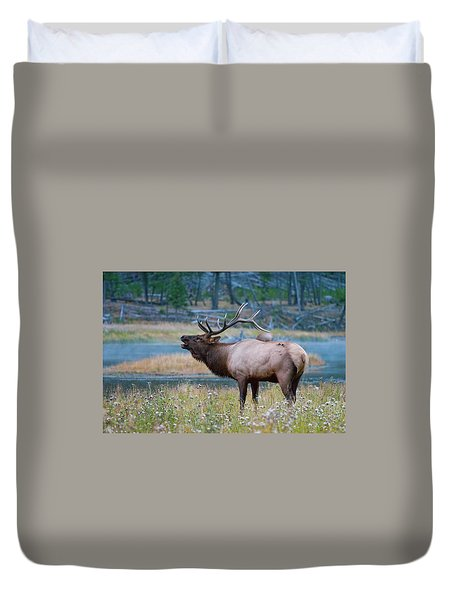 Duvet Cover featuring the photograph Bull Elk by Wesley Aston