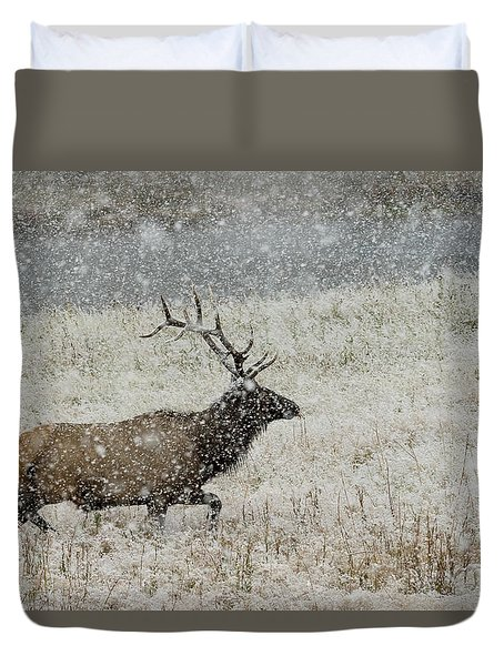 Bull Elk With Snow Duvet Cover
