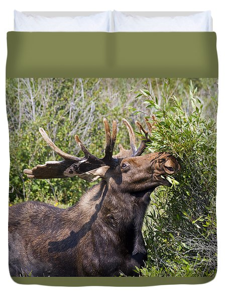 Bull Moose Duvet Cover