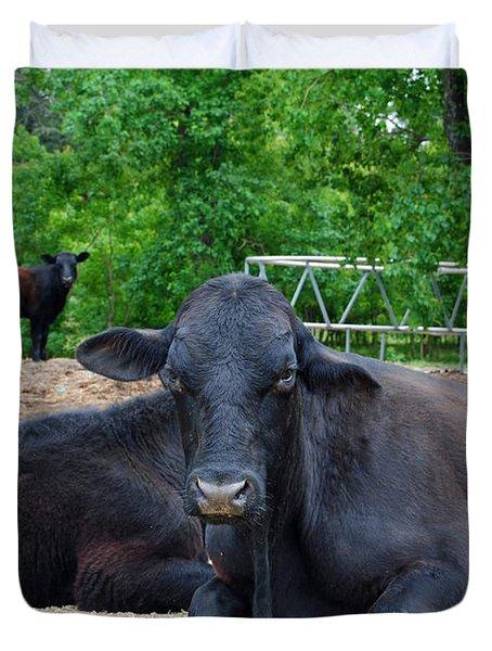 Bull Relaxing Duvet Cover