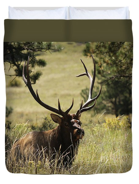 Bullelk1 Duvet Cover