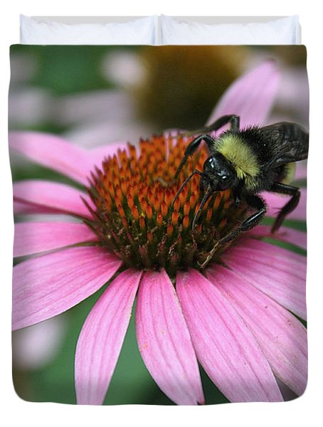Bumble Bee On Pink Coneflower Duvet Cover