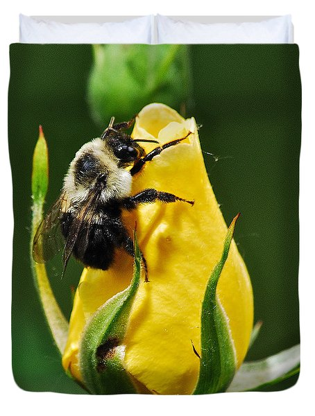 Bumble Bee On Rose  Duvet Cover by Michael Peychich