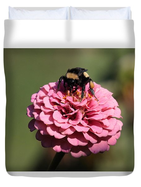 Bumble Bee On Zinnia 2649 Duvet Cover