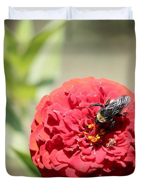 Bumble Bee On Zinnia Duvet Cover