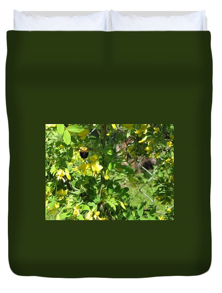 Bumblebee In Flight In Yellow Flowers Duvet Cover