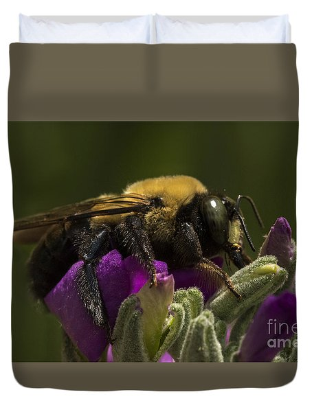 Bumblebee Lunch Duvet Cover by Darleen Stry